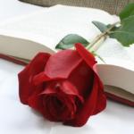 Giornata del libro: cultura del leggere e dello scrivere