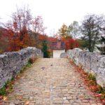I nuovi corsi della Scuola Dante di Friburgo (Svizzera)