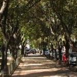 La settimana della lingua italiana a San Isidro