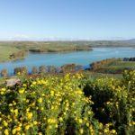 Raccontare la Sicilia e il Mediterraneo. Triskelēs: una collana per il Terzo Millennio